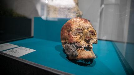 5 tūkst. metų istorija vienoje parodoje: radiniai įkvėpę žymiąją Mariją Gimbutienę