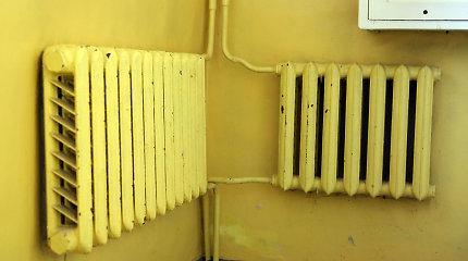 """Kuršėnų darželyje """"kiškučiai"""" pirmadienio rytą pasitiko su 13 laipsnių šilumos"""