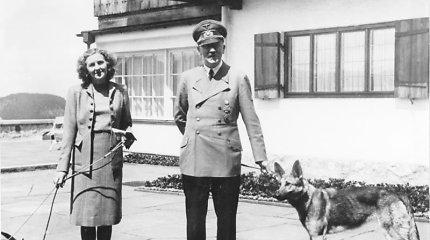 CŽV paviešino buvusią slaptą ataskaitą apie Adolfą Hitlerį ir jo seksualinius polinkius