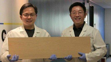 Medieną sutvirtino tiek, kad ji gali pakeisti ir plieną, ir net titano lydinius