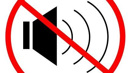 Ukmergiškiai triukšmadariams nebepakantūs nuo 19 val.: skundai policijai – net dėl vaikų žliumbimo