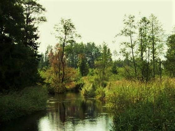 """""""Upių labirinto"""" nuotr./Visinčia"""