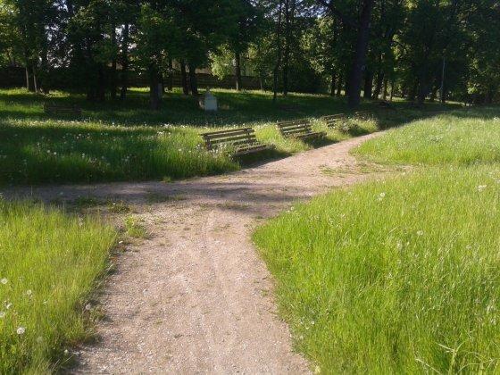 Kėdainių parkas, gera vieta daugintis Erkėms.