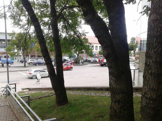 """Ingridos N. nuotr./Kėdainiuose prie """"Maximos"""" vėjas nulaužė medį"""