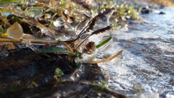 Ledas pajūryje (Liudo nuotr.)