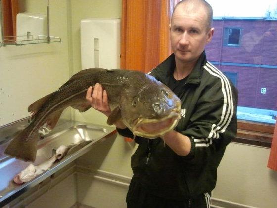 Skaitytojo Remigijaus P. nuotr./Remigijaus žuvys, sugautos Norvegijoje