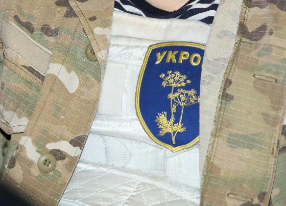 Eriko Ovčarenko/15min.lt nuotr./Ukrainos savanorių bataliono būrio vadas dr. Jevgenijus Dykyjus