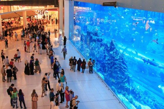 Dubajaus prekybos centro akvariumas
