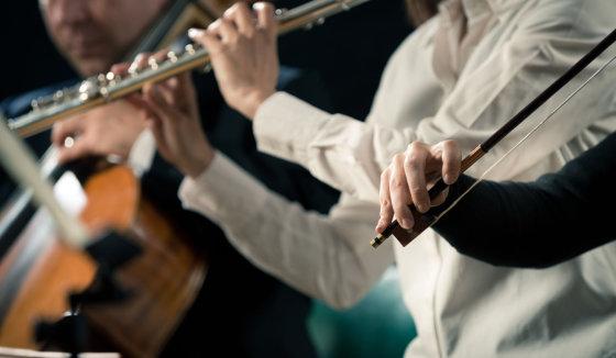123rf.com nuotr./Koncertas