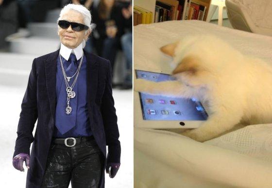 """""""Reuters""""/""""Scanpix"""" ir """"Twitter"""" nuotr. /Dizaineris Karlas Lagerfeldas ir jo katytė Choupette"""