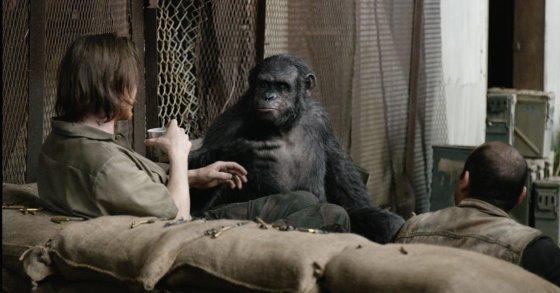 """""""Theatrical Film Distribution"""" nuotr./Filmas """"Beždžionių planetos aušra"""""""
