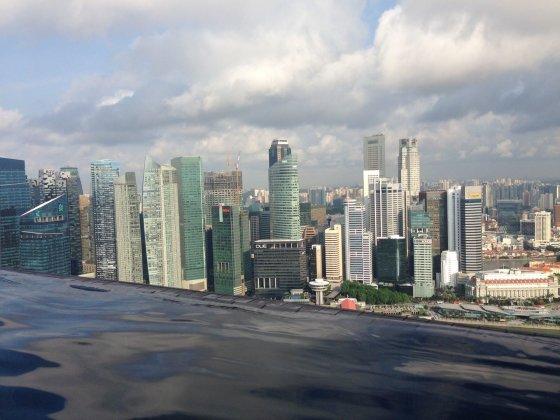 Sandros Voskaitės nuotr./Singapūro panorama.