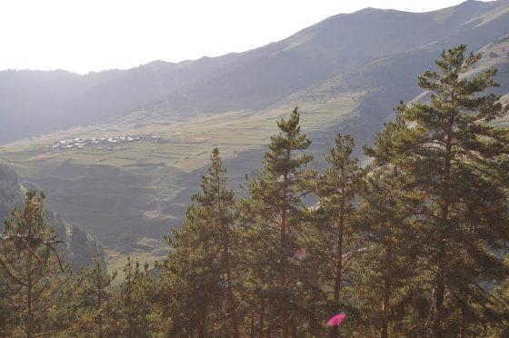 M.Vadišio nuotr./Ditlo kaimas – paskutinė pasienio gyvenvietė