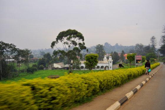 M.Vadišio nuotr./Tai pakankamai žalias ir tvarkingas Ugandos miestas