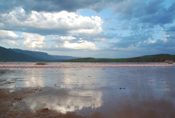 E.Digrytės nuotr./Flamingais ir geizeriais garsėjantis Bogorijos ežeras