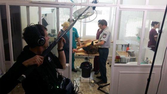 """TV3 nuotr./Serialo """"Inspektorius Mažylis"""" komanda"""