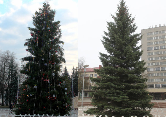 Tomo Markelevičiaus nuotr./Kalėdų eglė Panevėžyje 2013-aisiais (kairėje) ir šiemet