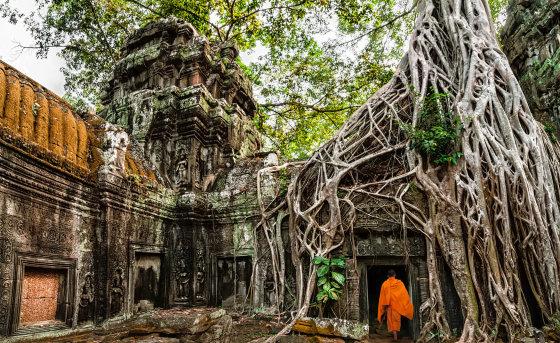 123rf.com nuotr./Kambodža, Ankoras