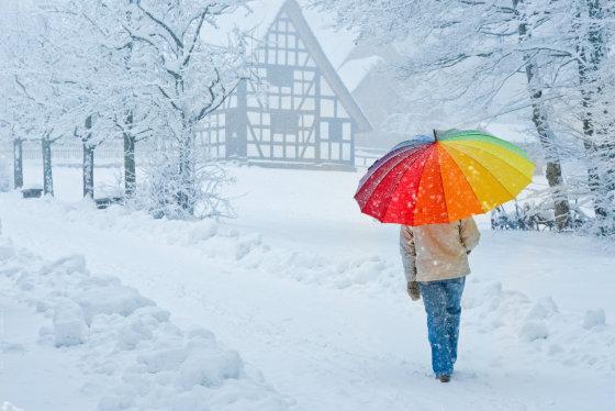 Fotolia nuotr./Žiemos kraštovaizdis