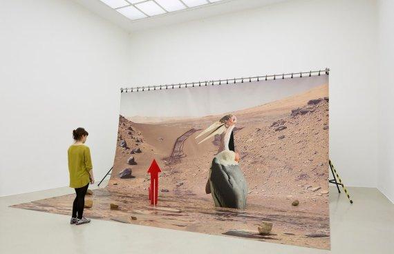 "Organizatorių nuotr./Katja Novitskova ""Mars installation"""