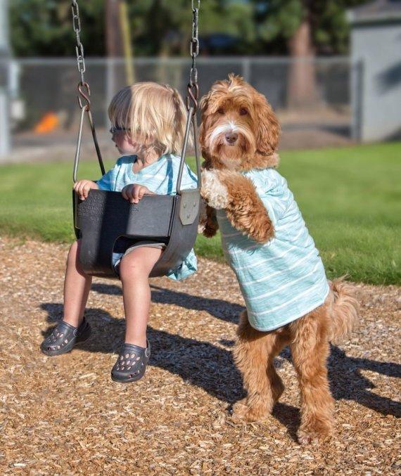 """""""Scanpix""""/""""Caters News Agency"""" nuotr./Įvaikinto berniuko ir šuns draugystė užfiksuota jaukiuose kadruose"""