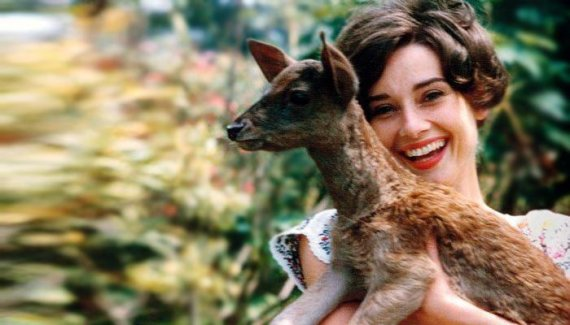 everythingaudrey.com nuotr./Audrey Hepburn su elniuku Peppinu