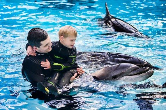 Jūrų muziejaus nuotr./Delfinų terapija
