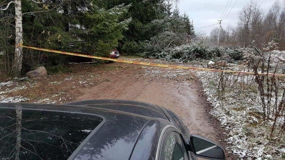 Asmeninio albumo nuotr./Nerijaus Juškos kaimynas medžiais užvertė kelią