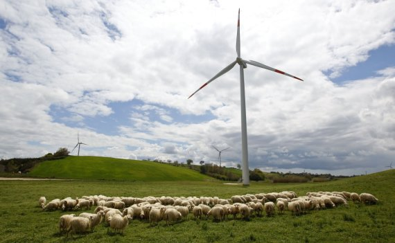 """Reuters""/""Scanpix"" nuotr./Vėjo turbinos"