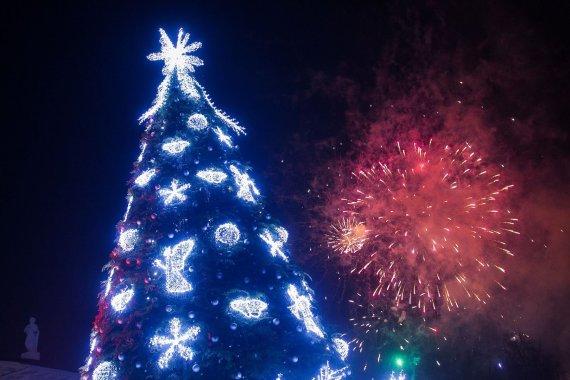 Irmanto Gelūno/15min.lt nuotr./Lietuvos Kalėdų eglutės įžiebimas Katedros aikštėje