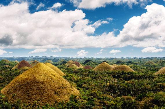 Shutterstock nuotr./Šokoladinės kalvos, Boholio sala, Filipinai