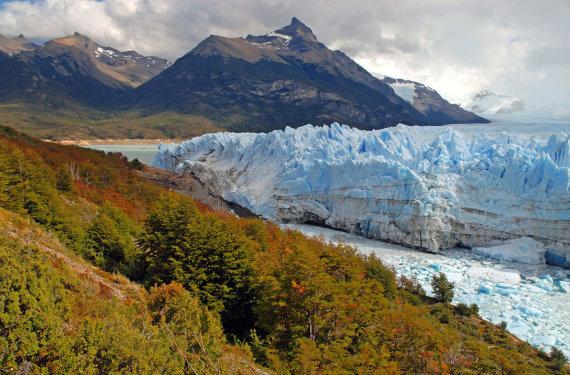 123rf.com nuotr./Argentina, ledynas Patagonijoje
