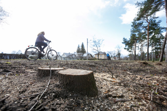 Eriko Ovčarenko / 15min nuotr./Iškirsti medžiai