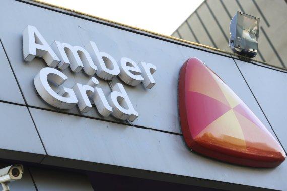 "Irmanto Gelūno / 15min nuotr./AB ""Amber Grid"""