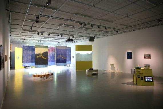 """Julijos Navarskaitės nuotr./Parodos """"Jūros veidrodis (žalčio pasaka)"""" vaizdas, VDA Nidos meno kolonija, Neringa, 2017"""