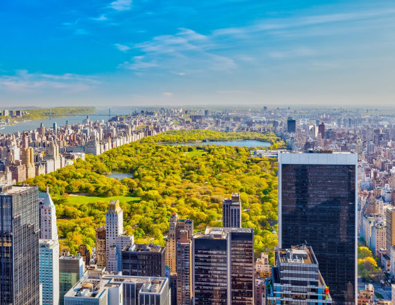 123rf.com nuotr./Centrinis parkas Niujorke