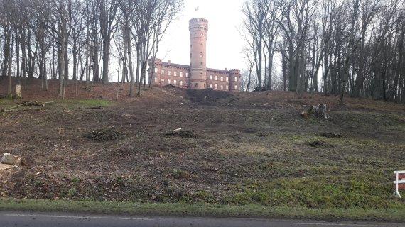 Atlikus kraštovaizdžio formavimo kirtimus, nuo kelio Kaunas-Jurbarkas atsivėrė pilis. Česlovo Meškausko nuotrauka