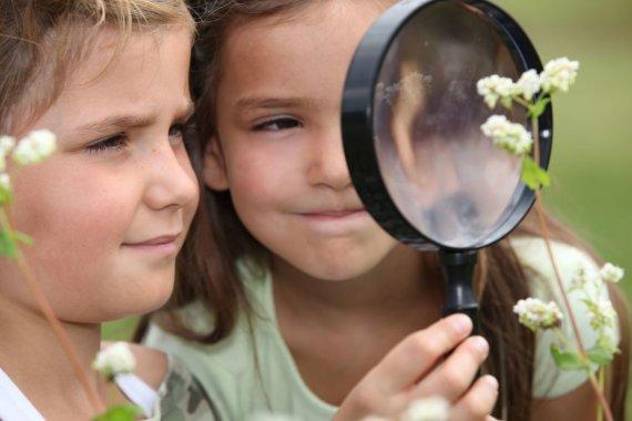 123RF.com nuotr./Vaikai tyrinėja augalaus