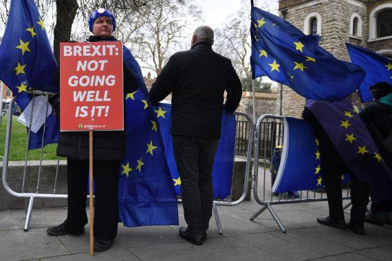 """AFP/""""Scanpix"""" nuotr./Protestuotojai prieš """"Brexit"""""""