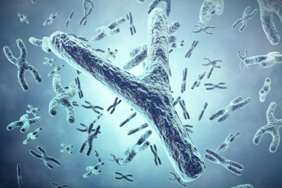 123RF.com nuotr./Chromosomos