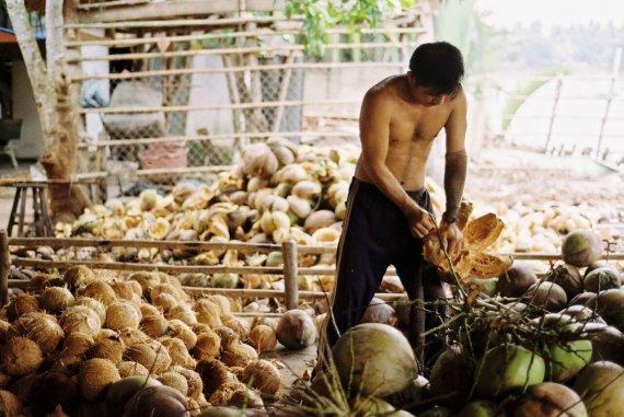Asmeninės nuotr./Vietnamas, Kokoso delta. Nuotrauka padaryta 2013 metais
