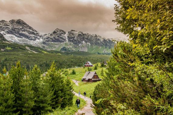 M.Mozyro nuotr./Tatrų kalnuose