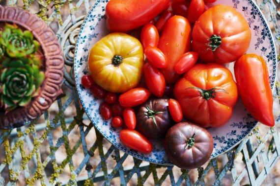 Vida Press nuotr./Įvairių rūšių pomidorai