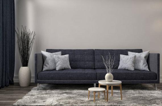 123rf.com nuotr. /Sofa