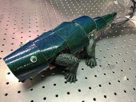 Reuters/P.Korėjos mokslininkai sukūrė dirbtinę chameleono odą