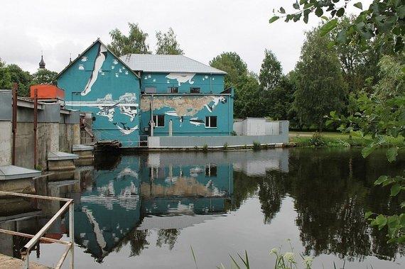 Viktorijos Juškauskaitės/LRT.lt nuotr./Tapyba ant sienų. Marijampolė