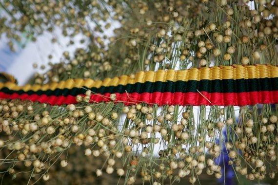 BFL nuotr./Lietuviško kaimo simboliu tapę linai baigia išnykti.
