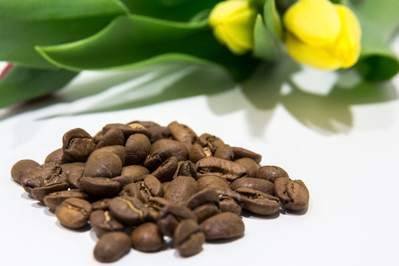 15min nuotr. / Maragogipe kavos pupelės