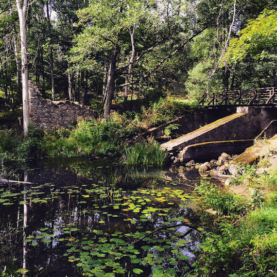 Karolio Žukausko/100dienu.lt nuotr./Marimonto vandens malūno griuvėsiai