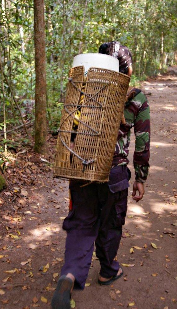 Viktorijos Panovaitės nuotr./Štai tokiuose krepšiuose reindžeriai neša maistą orangutangams